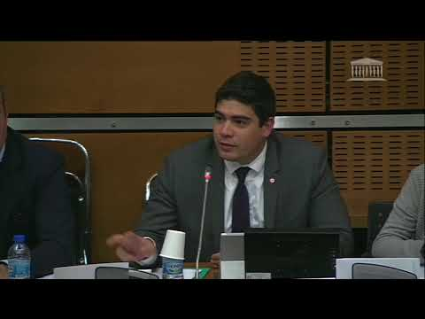 Question à Martin Bouygues en Commission d'Enquête sur la politique industrielle de la France