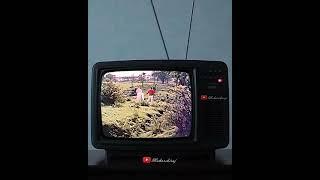 WhatsApp status video song in Nostalgia TV Sirimalle nive from Panthulamma Telugu Movie