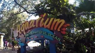 Aquarium: The Beautiful Ocean Walkthrough at SeaWorld Orlando | GoPro Hero 5