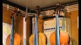 Музыка 1. Первые музыкальные инструменты. Звучание скрипки — Академия занимательных наук