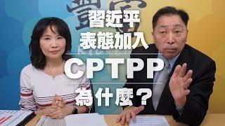'20.11.24【豐富│東南西北龍鳳配】習近平表態加入CPTPP為什麼
