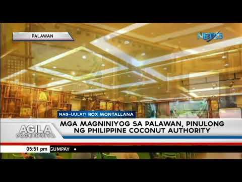 Mga magniniyog sa Palawan, pinulong ng Philippine Coconut Authority