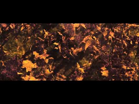 Wall E - La Vie En Rose Scene
