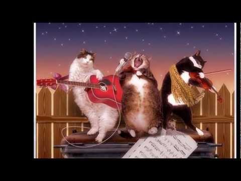 Танец - Кошки не похожи на людей скачать mp3 песню