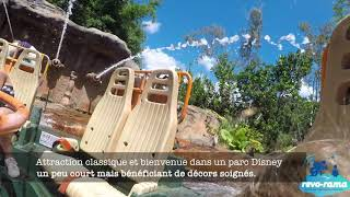 Disney's Animal Kingdom de Walt Disney World