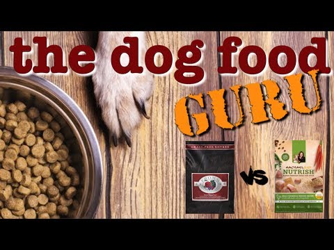 Rachael Ray Vs Fromm Dog Food Mash-up