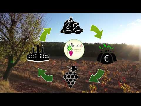 A New Life For Organic Matter [2017]
