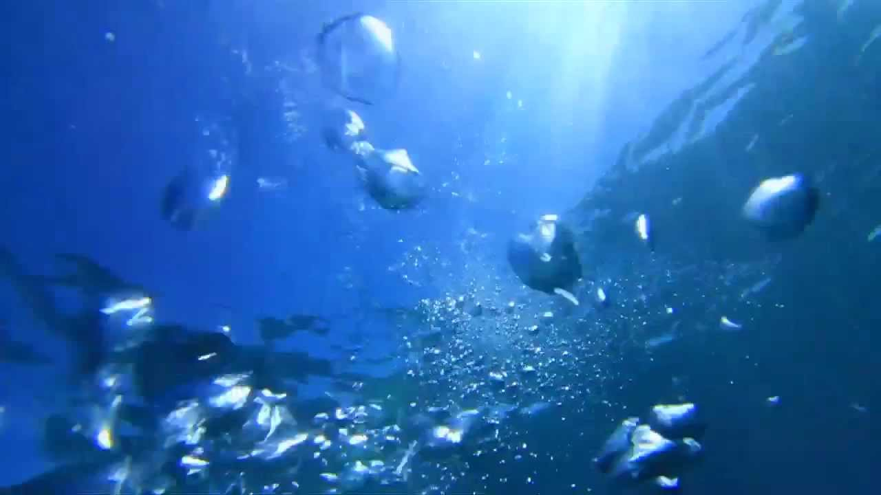 MediaSpark Underwater Bubbles 720p - YouTube