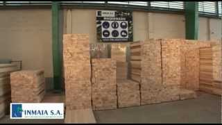 Balsa Wood - Inmaia 2012 -.mp4