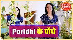 Paridhi Sharma Turns Gardener During Lockdown  | Saas Bahu Aur Saazish