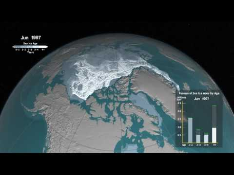 Weekly Arctic sea ice age between 1984 and 2016