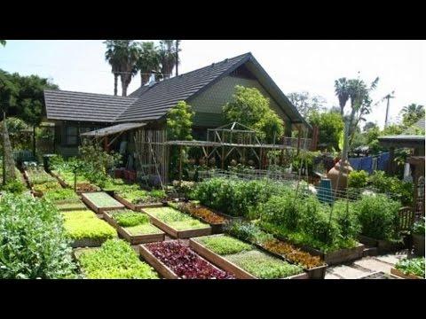 Curso Horta Caseira - Implantação da Horta