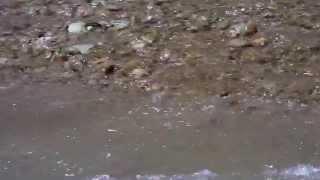 Река Бельбек / Belbek River (HD) - Севастополь Онлайн / SevastopolOnline.com