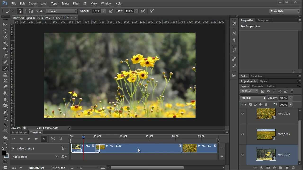 photoshop video