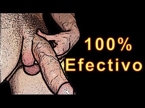 Los mecanismos por el aumento del miembro viril