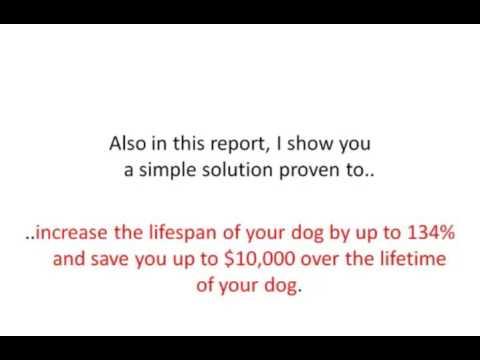 dog-food-secrets-review-dog-food-secrets-program-2017