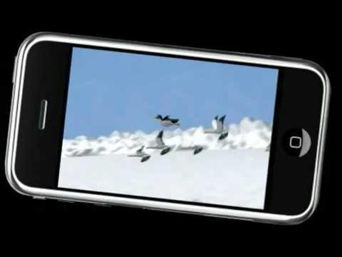 Yetisports 1 Trailer On PocketGamer.co.uk
