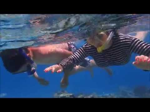 Celebrity cruise experience: snorkeling in Mystery Island, Vanuatu, Pacific