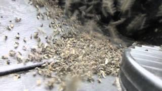 комары и мошка Ямало Ненецкий Автономный округ(, 2015-02-16T20:19:01.000Z)