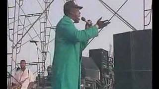 Barrington levy - Too experienced