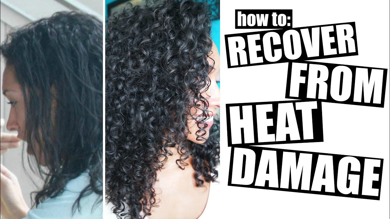 How To Recover From Heat Damage To Healthy Curly Hair