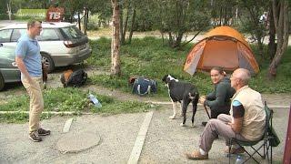 В Апатитах автовладельцы ночуют в палатках чтобы получить полис ОСАГО