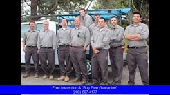 Exterminator Greenwich CT: Free Pest Control Inspection & 100% Money Back Guarantee