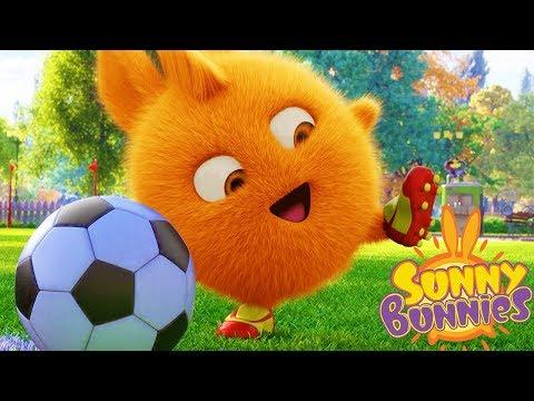 Cartoons for Children | Sunny Bunnies - SOCCER PLAYER | SUNNY BUNNIES | Funny Cartoons For Children