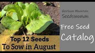 Top 12 Seeds to Sow in August