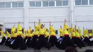 秋田大学よさこいサークルよさとせ歌舞輝さん、秋大祭 1日目 イベントス...