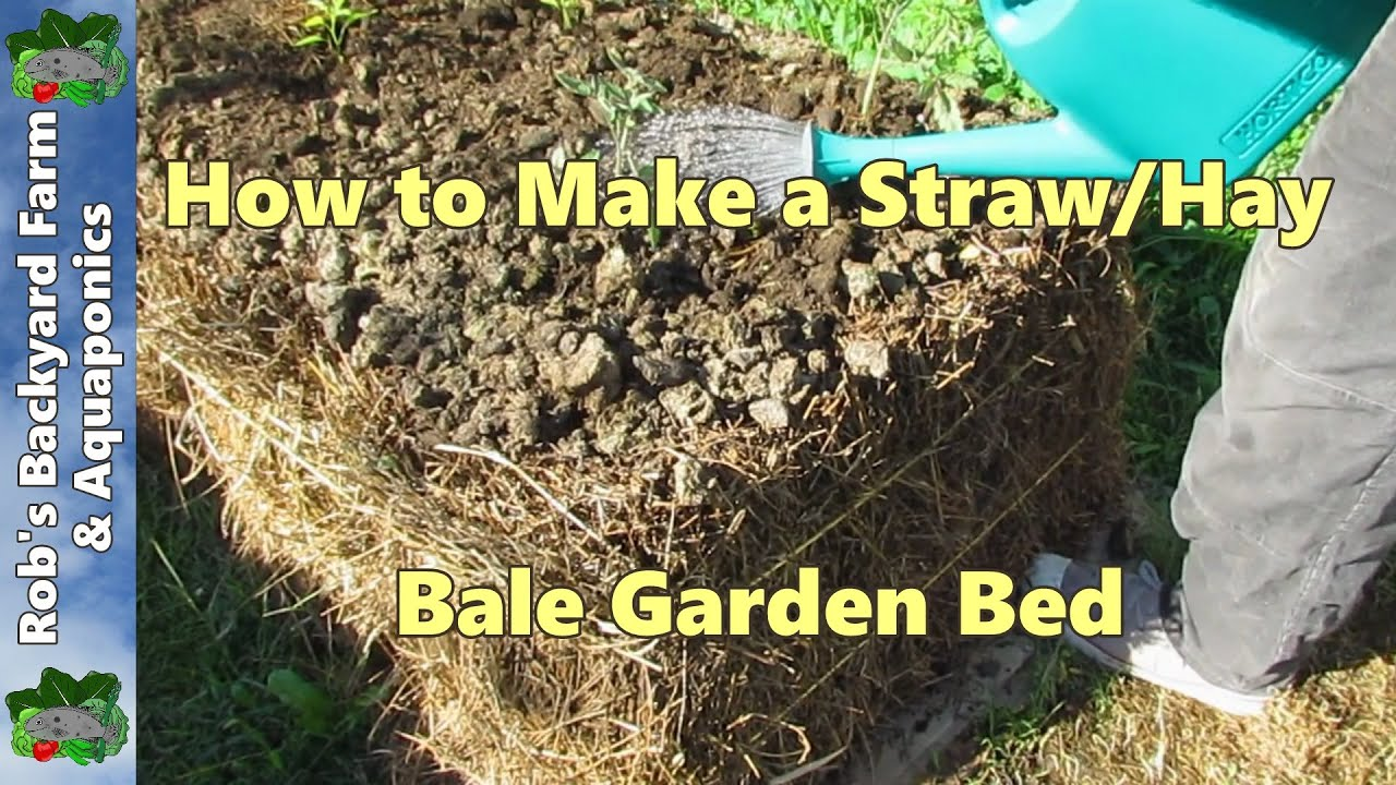 How to make a straw bale garden bed.. Our 1st Lucerne/alfalfa bed ...