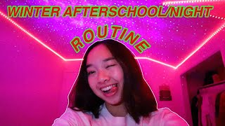WINTER AFTERSCHOOL/NIGHT ROUTINE! Vlogmas Day 3 | Nicole Laeno