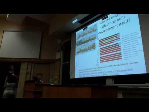 Normposium - Talk 2: Dr. Laura Baumgartner