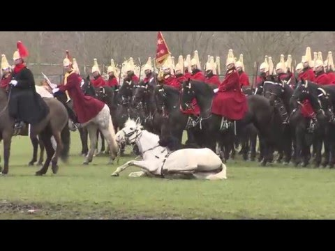 Household Cavalry: Season