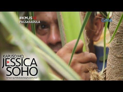 Kapuso Mo, Jessica Soho: Lalaking tatlong taong namalagi sa puno ng niyog, sinagip