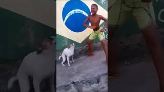 Brazilian dog dancing with Self Control