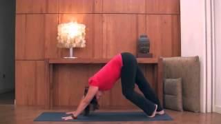 Йога айенгара видео уроки для начинающих