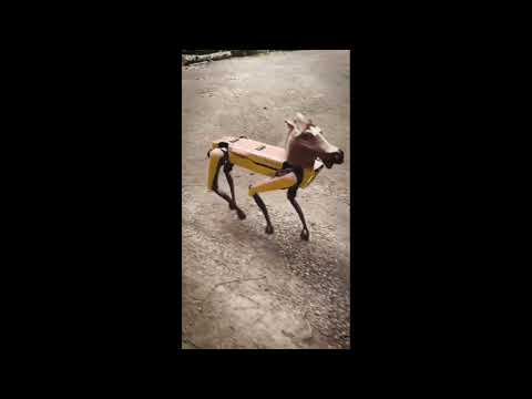 spot boston dynamics horse mask