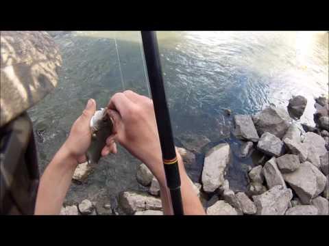 Fishing At The Montezuma Wildlife Refuge 2016