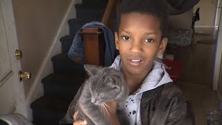 10-Year-Old Boy Trying to Save Cat Stuck In Tree Ends Up Needing His Own Rescue
