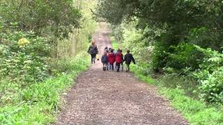 Brokerswood Country Park - A Day in the Life
