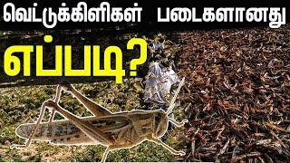 வெட்டுக்கிளிகள் படையெடுப்பு!! காரணம் என்ன? வெட்டுக்கிளிகள் படைகளானது எப்படி? | Locust Attack