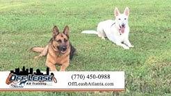 Off Leash K9 Training Atlanta | Pet Training in Peachtree City