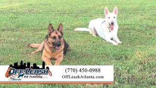 Off Leash K9 Training Atlanta | Pet Training In Peachtree City