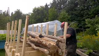 Firewood Cutting Rack Diy