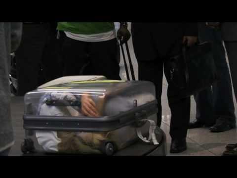 Amnesty International: Frau im Koffer