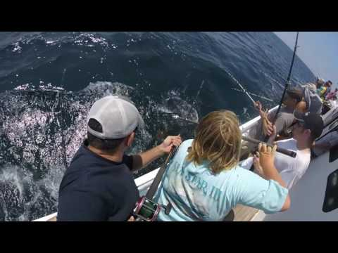 Deep Sea Fishing Trip In Cape May, NJ