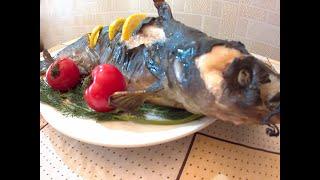 Рыба СОМ в ДУХОВКЕ #рыба #рыбавдуховке #сом