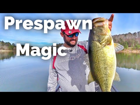 How To Fish For Largemouth Bass During Prespawn - Early Spring Fishing