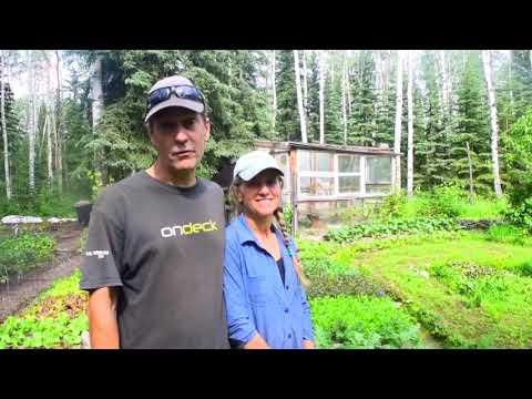 Denali Organic Grower